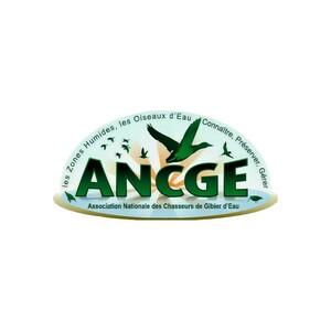 Logo_ANCGE.jpg